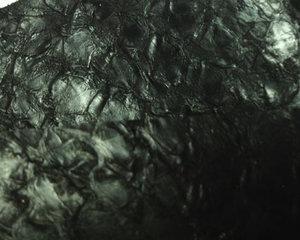 Fiskskinn av abborre. Blank svart, ca 24*6 cm