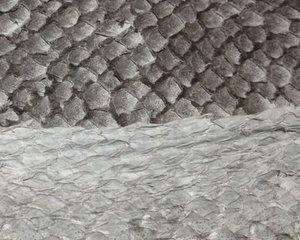 Fiskskinn av lax. Matt grå, ca 24*6 cm