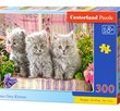 Three Grey Kittens 300 Bitar Castorland
