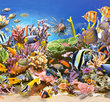 Underwater Life 4000 Bitar Castorland