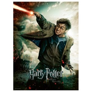 Harry Potter´s magical world 100 Bitar Ravensburger