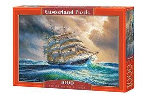 Sailing against all odds 1000 Bitar Castorland
