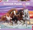 Trio of wild horses 200 Bitar Schmidt