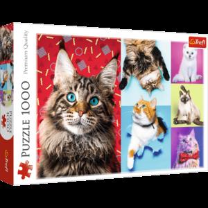 Happy Cats 1000 Bitar Trefl