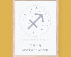Sagittarius - Zodiac signs