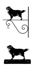 Grupp 2 - FCI  nr. 45 / Berner Sennenhund