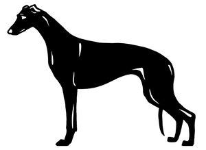 Grupp 10  - FCI nr. 158 / Greyhound (Dekal)
