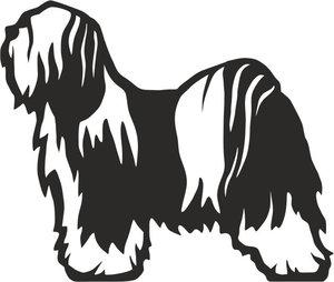 Grupp 9 - FCI nr. 209 / Tibetansk Terrier