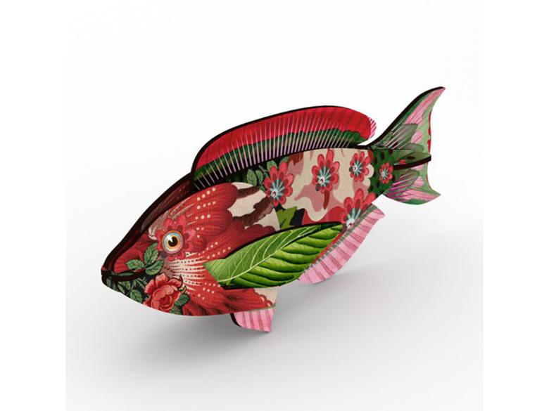 Fisk Miho, Abracadabra