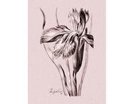 Affisch 'Iris' liten