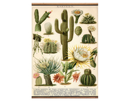 Väggbonad 'Kaktus' liten