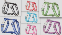 Ziggy Dog harness