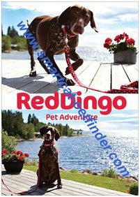 Affisch Red Dingo Sommar