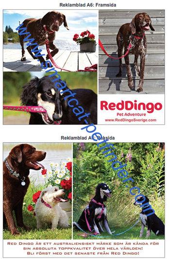 Reklamblad Red Dingo A6 Sommar
