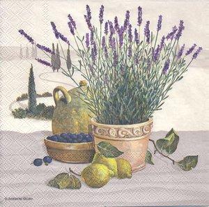 Lavendel i kruka med citron mm  8216