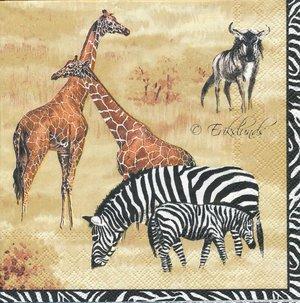 Många motiv på Afrikas djur   3069