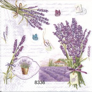 Lavendel  8336