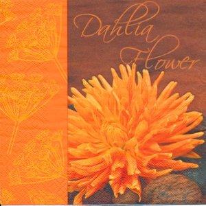 Orange Dalia  8215