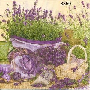 Lavendel  8350