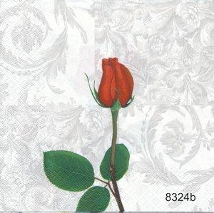 Röd ros olika motiv  8324
