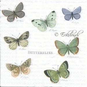 Fjärilar    sa4062