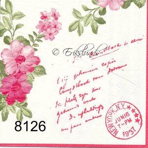 Rosa   8126