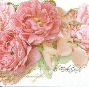 Rosa nyanser