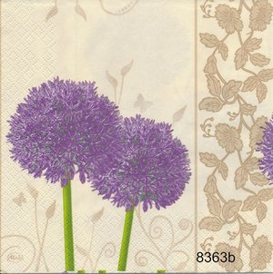 Allium olika motiv   8363
