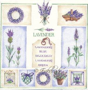 Lavendel    7007