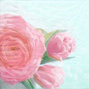 Rosa blomma  8257