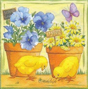 Kycklingar vid krukväxt    sep7015