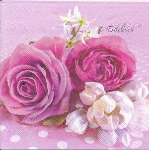 Rosa rosor med prickar  8104