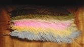 """10-12"""" Ostrich Herl"""