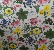 Lisa ljus botten färg glada blommor