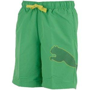 Badshorts Puma Logo Bermuda, grön