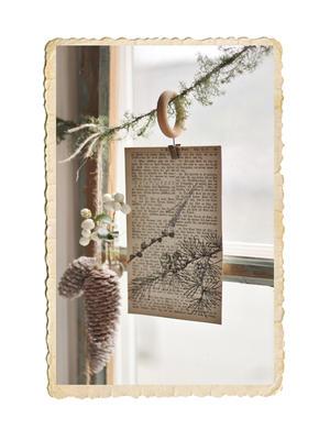 Set med adventskort, larix