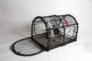 Crab Creel 26'', metal base