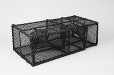 Wrasse Trap, Extended Parlour