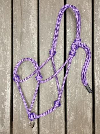 Rope halter with lead rope ring