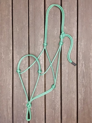 Standard rope halter