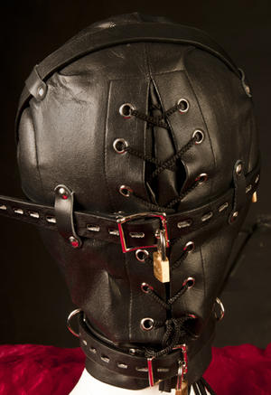 Heavy Duty Leather Hood