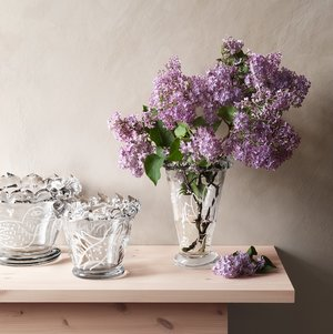 Sargasso Vase Clear - Kosta Boda