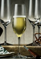 Morberg Collection Champagne 4-pack