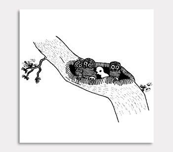 Owls in the bog