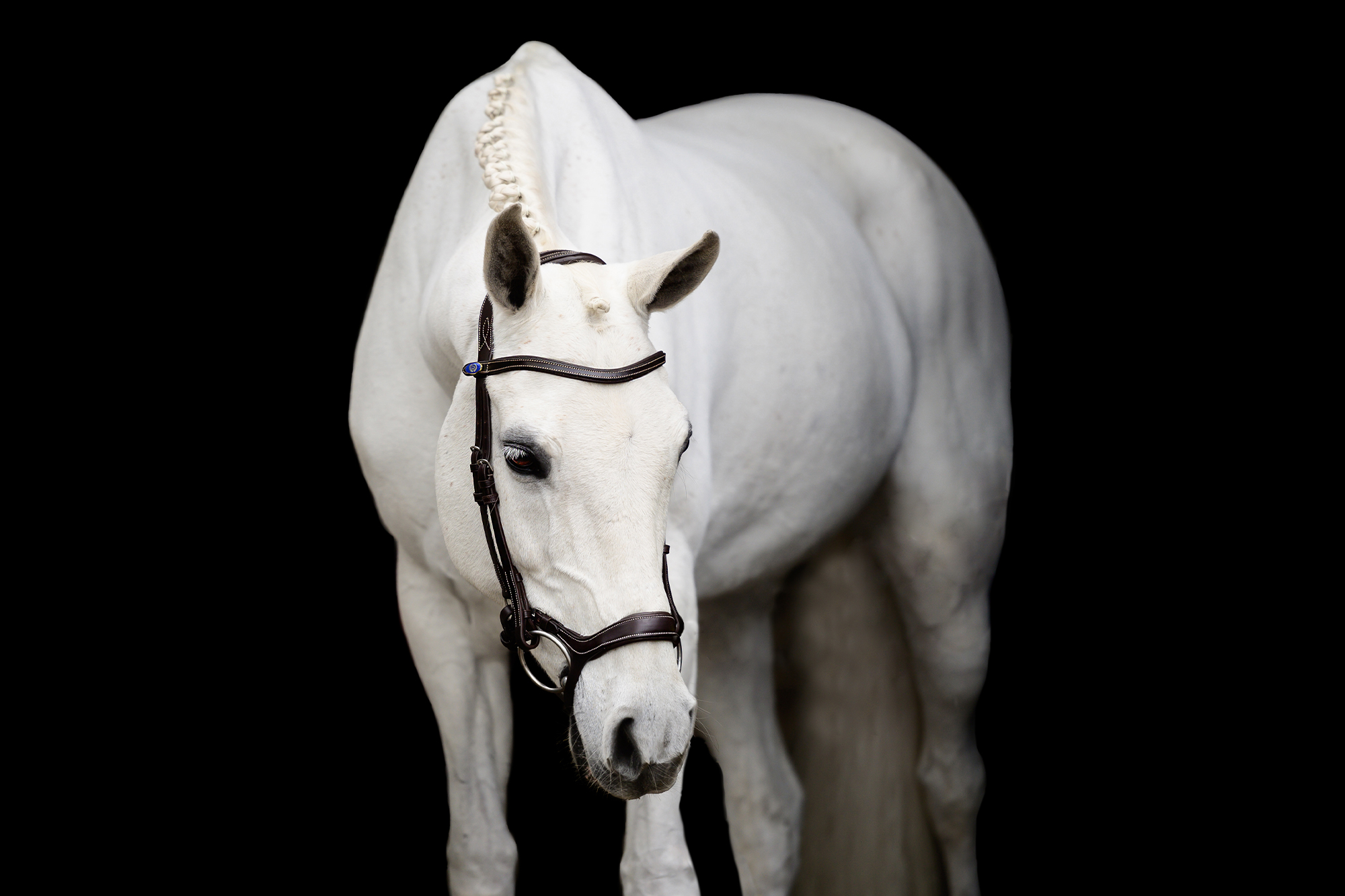 Ponnyträns, Pioneer - PS of Sweden