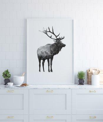Wapiti hjort