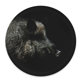 Wild boar in the night - Round tray Ø38cm