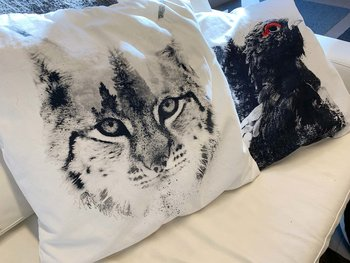 Lynx in focus - Pillow case 50x50 cm