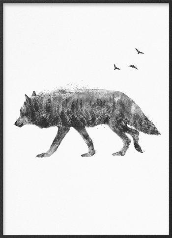 Vandrande varg