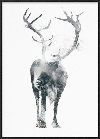 Capital reindeer